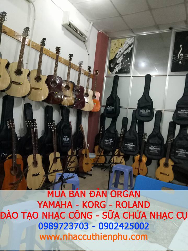 phu kien dan organ-guitar